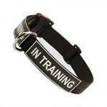 All Weather Nylon Dog Collar with Patches and Quick Release Buckle