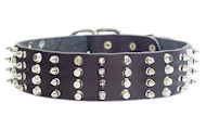 2 inch Leather Dog Collar with STUDS and SPIKES for walking dogs