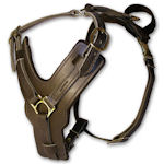 exlusive walking dog harness