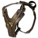 exlusive walking dog harness