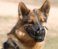 German shepherd leather dog muzzle
