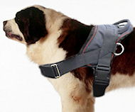 Saint Bernard dog harness-Nylon dog harness for tracking/pulling