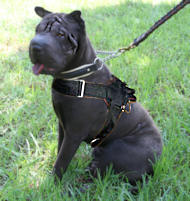 Sharpei nylon dog harness with handle for walking/tracking