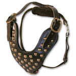 Studded leather walking dog harness