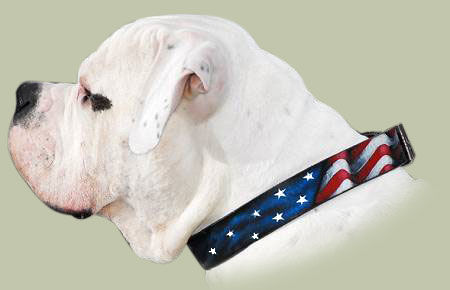 american flag collar leather