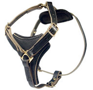 Medium Dog Harness-Control Leather Dog Harnesses for ALL BREEDS