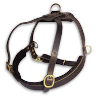 LARGE Tracking Leather Dog Harness- Large pulling harness