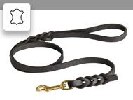 Leather leashes/Leads
