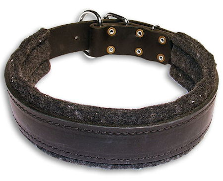 Leather Custom Dog Collar for everyday Dog