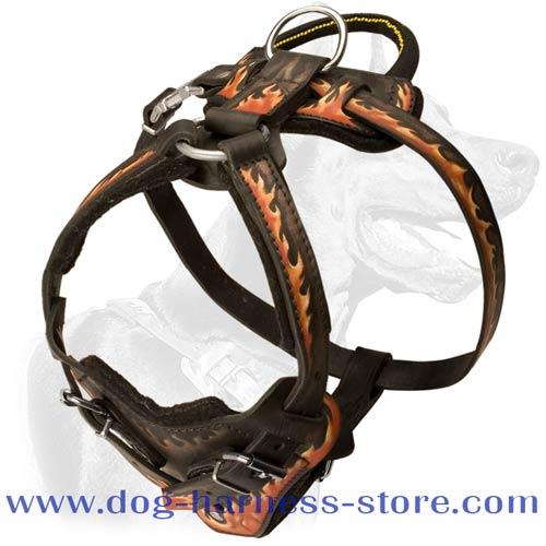 Leather Dog Harness for Training and Walking with Wide Chest Plate and Wide Straps