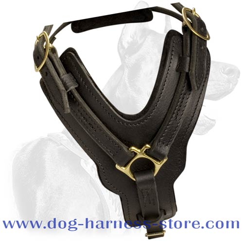 Durable Full Grain Leather Dog Harness for Training Different Breeds