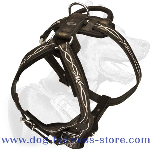 Dog Training Harness Manufactured for Demands of Heavy Duty Work