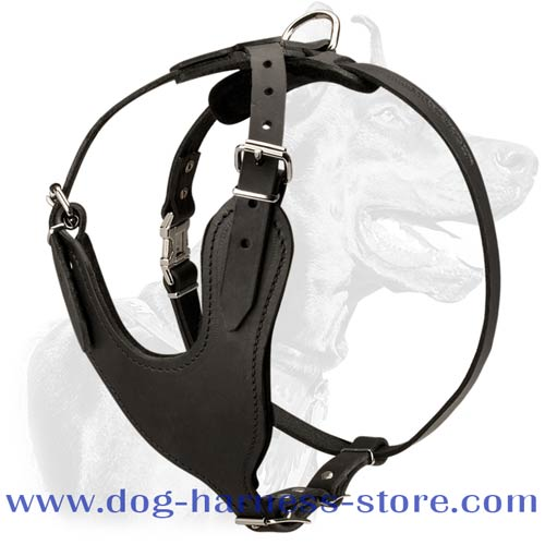 Strong Full Grain Leather Harness for Heavy Duty Training