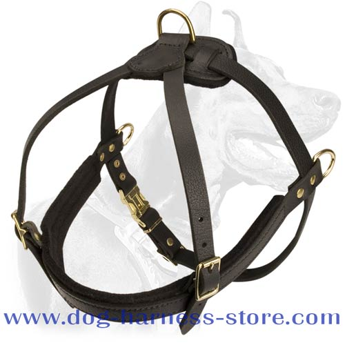 Dog Harness Designed for Pulling and Tracking Work