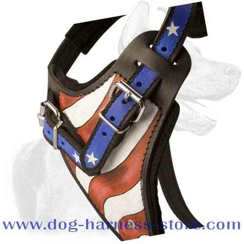 Training Dog Harness Made of Genuine Leather, Comfortable for Different Breeds
