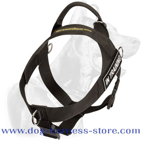 Nylon Dog Harness with D-Ring to stop pulling