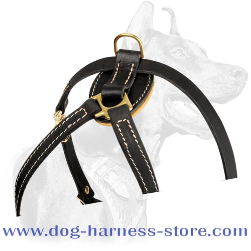 Quality Durable Tracking Harness for Small Breeds and Puppies