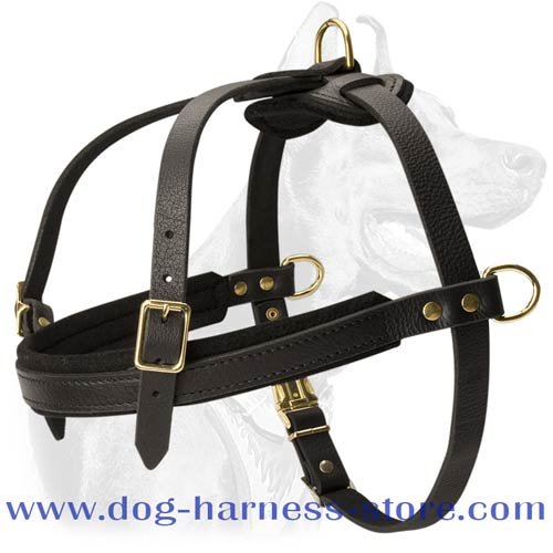 Dog Harness Made of Leather, Light Weight for Comfortable Tracking and Pulling Work