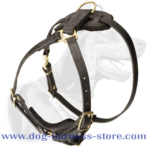 Tracking/Walking Dog Harness of Light Weight for Different Breeds