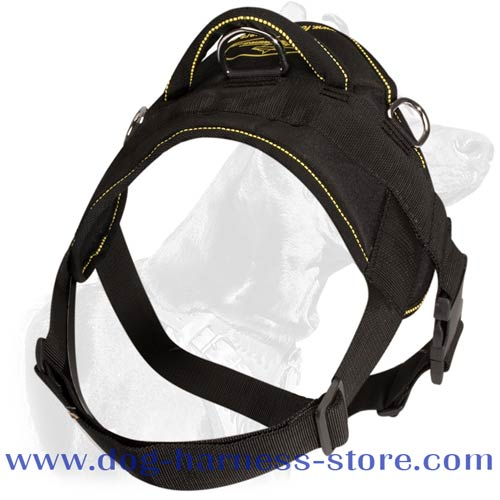 Light Weight Dog Harness Made of Nylon