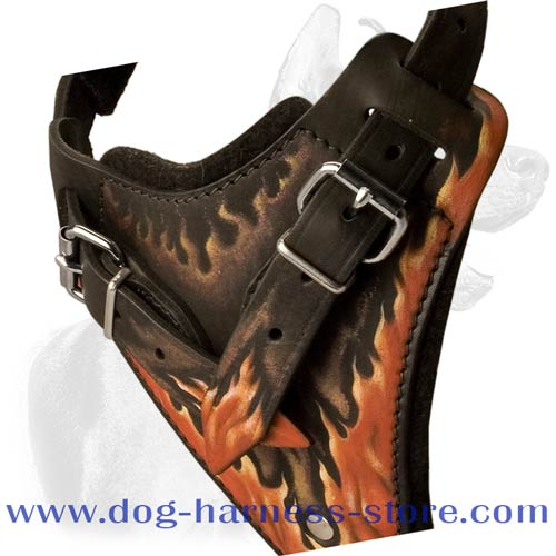 Training Dog Harness of Enhanced Durability and Comfort for Different Breeds