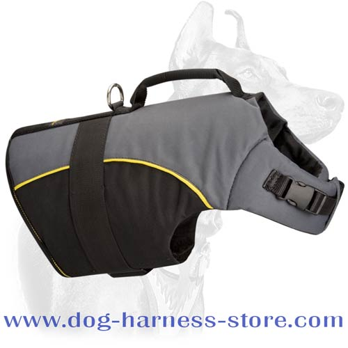 Nylon Dog Vest for Help During Rehabilitation Periods