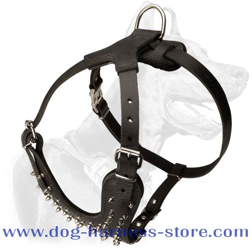 Durable Leather Dog Harness for Walking with Decoration of Spikes