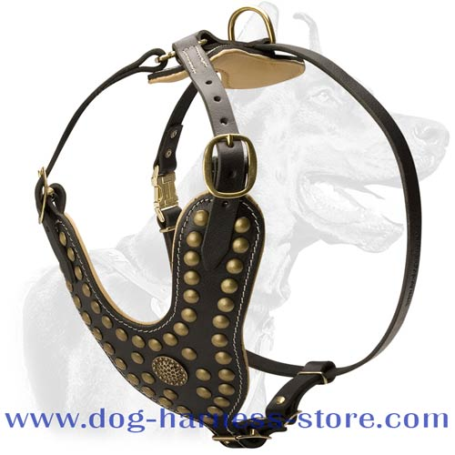 Stunning Design Leather Dog Harness with Brass Fittings for All Breeds