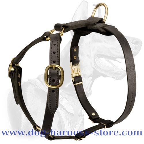 Durable Leather Dog Harness for All Breeds