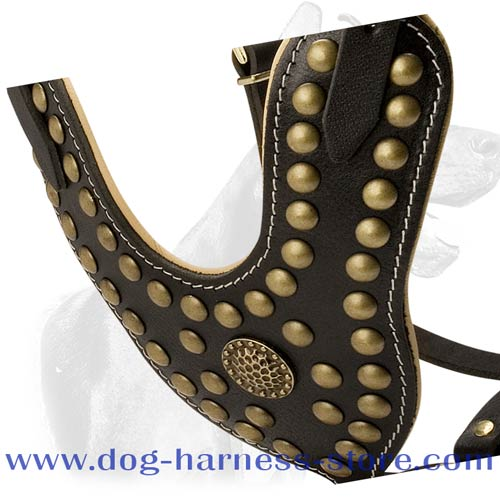 Adjustable Leather Dog Harness of Prime Quality with Brass Fittings