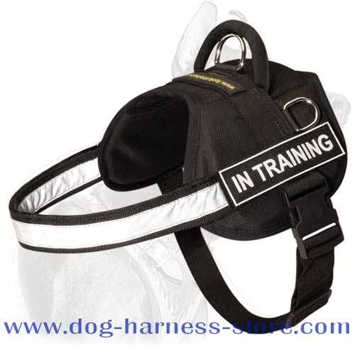 Durable All Weather Harness with Reflective Trim and ID Patches for Working Dogs