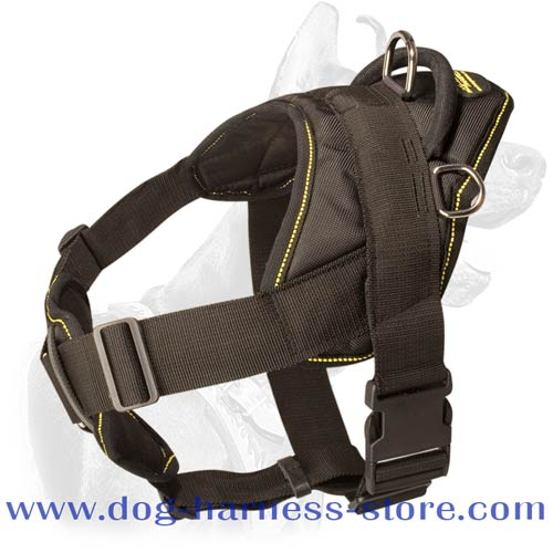 Nylon Harness with Chest Plate and Four Points of Adjustment
