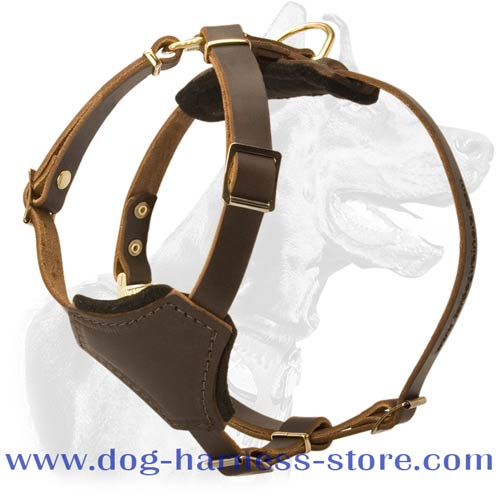 Leather Dog Harness for Small Breeds Tracking