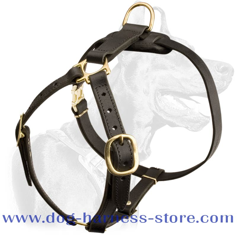 Luxury Handcrafted Leather Dog Harness for Tracking and Walking [H7