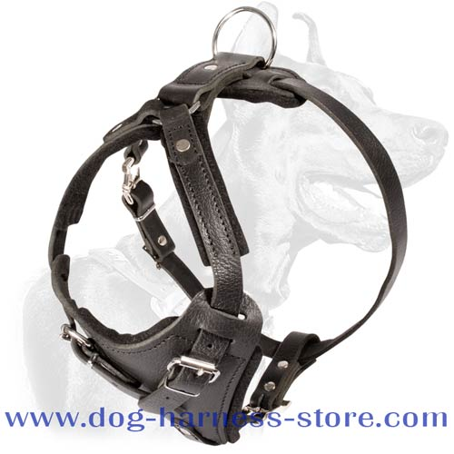 Leather Training Dog Harness with Wide Chest Plate and Straps