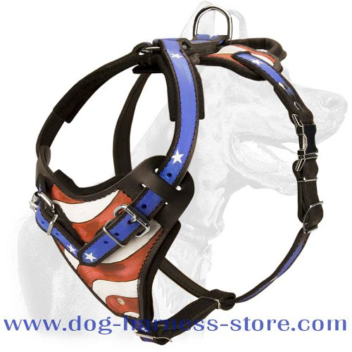Handcrafted Leather Harness for Training and Walking with Exclusive Pattern