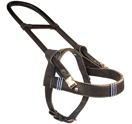 Leather Guide dog harness