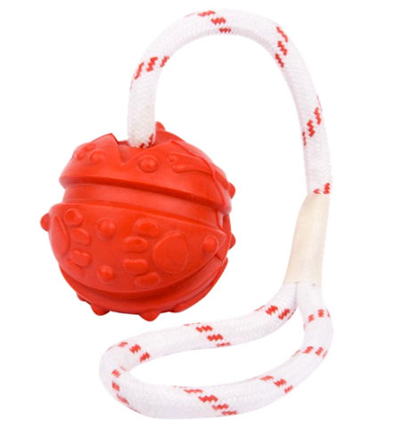 Similar to Everlasting Fun Ball on a Rope for all breeds
