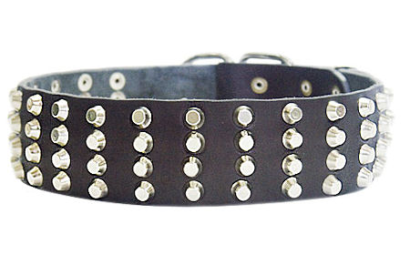 Wide Studded Leather Dog Collar-2 inch wide for every day walking dogs