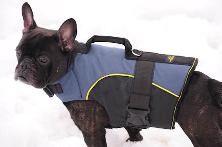 Dog Harness For Small Dogs Like French Bulldog Spaniels H13 1021 Leather Harnesses Nylon Spiked
