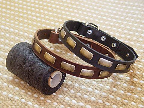 Leather Special Dog Collar With Plates for dog training or for dog owners