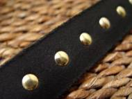 leather spiked dog collar closeup
