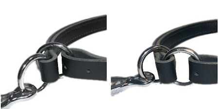 Adjustable Leather Slip Collar with NICKEL plated hardware  for all dogs